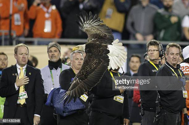 Bald Eagle in flight during the national anthem during the College Football Playoff National Championship game between the Alabama Crimson Tide and...