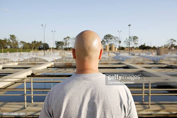 bald man looking at industrial scene, rear view - completely bald stock photos and pictures