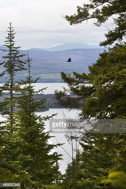 Bald Mountain in the Rangeley Maine area offersgreat hiking and stunning views