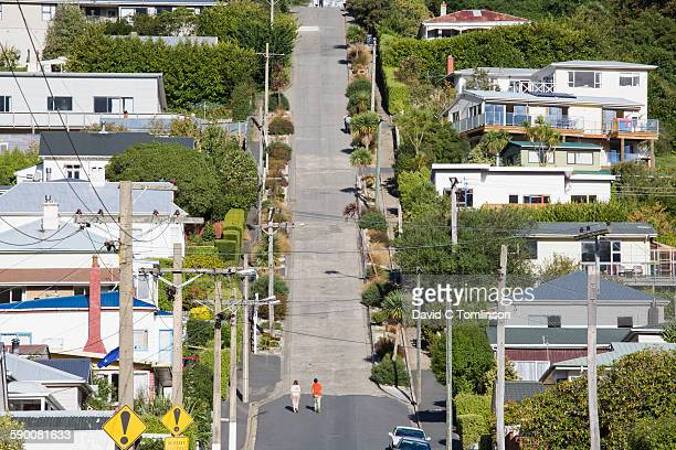 baldwin street, the world's steepest, dunedin - dunedin new zealand stock pictures, royalty-free photos & images