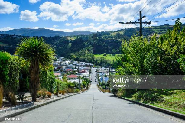 baldwin street, the world's steepest residential street, dunedin, south island, new zealand - dunedin new zealand stock pictures, royalty-free photos & images