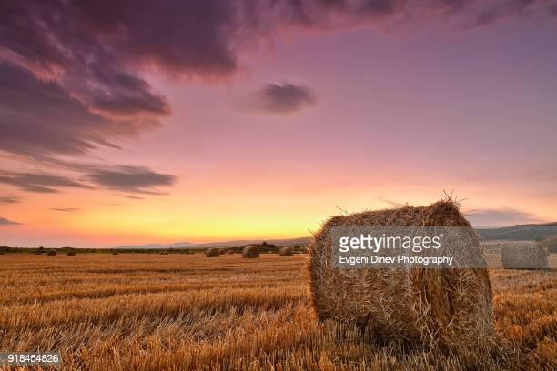 Bale of hay at dusk