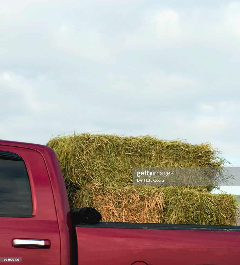 Bale of hay in red pick up truck : Stock Photo