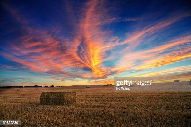 bale sunset - castilla y león bildbanksfoton och bilder