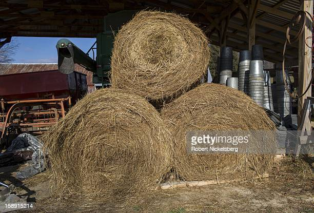 Bales of flaxseed stalk lie in a barn December 13 2012 on John Williamson's 200acre State Line Farm in North Bennington Vermont Williamson will turn...