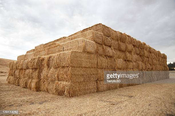bales of hay in palouse wa - terryfic3d stock pictures, royalty-free photos & images