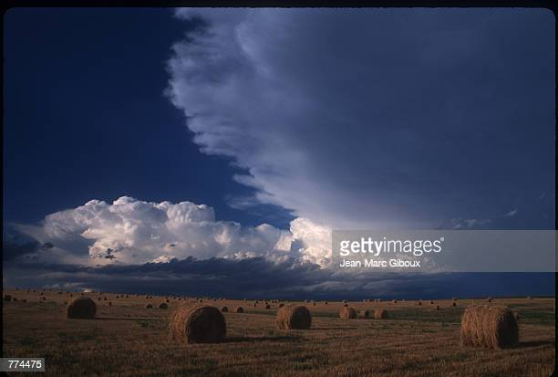 Bales of hay lay in a field August 1 1996 in the Badland National Park in Black Hills South Dakota The Black Hills are the oldest mountain range and...