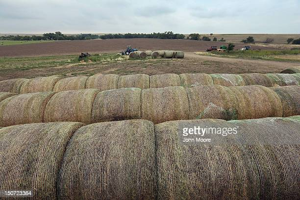 Bales of hay sit on a family farm on August 24 2012 near Logan Kansas Hay has been one of the few successful crops for some farmers in the area...
