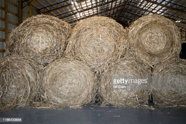 Bales of hemp stalks sit in the HempWood facility in Murray Ky on Thursday Sept 5 2019