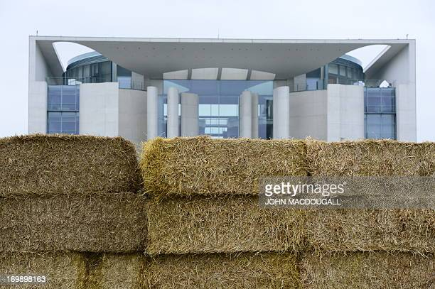 Bales of straw are piled up in front of the Chancellery during a protest of dairy farmers on June 4 2013 in Berlin The German dairy farmer's...