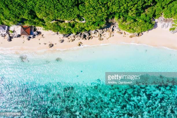 bali-playa desde arriba. disparo de dron recto - bali fotografías e imágenes de stock