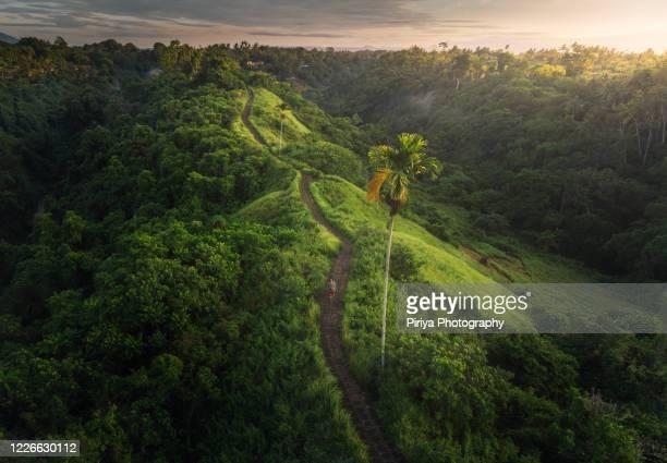 bali mountain ridge - indonesia stock pictures, royalty-free photos & images