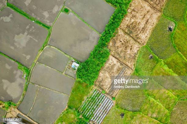 bali, rice fields flooded with water. view from above. - extreme weather stock pictures, royalty-free photos & images
