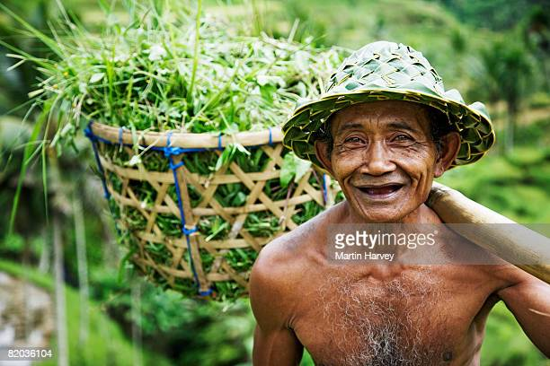 Balinese farmer with rice crops in basket.