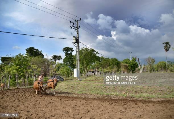 A Balinese farmer works his field as Mount Agung erupts seen from Kubu subdistrict in Karangasem Regency on Indonesia's resort island of Bali on...