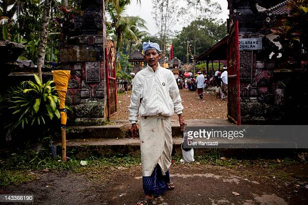 Balinese man leaves the temple carrying his rooster during the sacred 'Aci Keburan' ritual at Nyang Api Temple on February 16 2012 in Gianyar Bali...