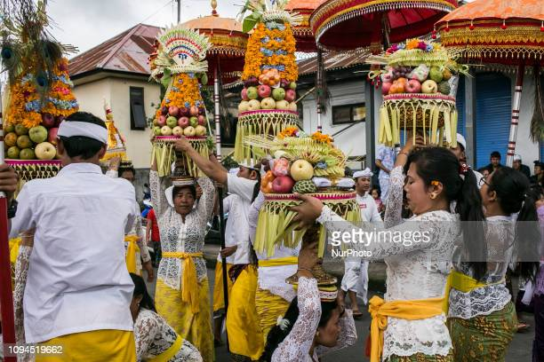 Balinese prepares offerings during Balingkang Kintamani Festival parade to celebrate Chinese New Year and also to introduce the acculturation of...