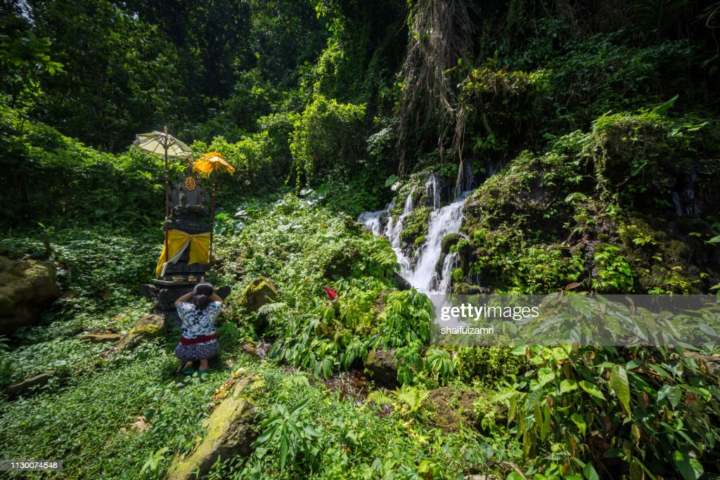 Balinese woman pray at small temple at beautiful and small waterfall hidden in the tropical jungle of Bali, Indonesia. : Stock Photo