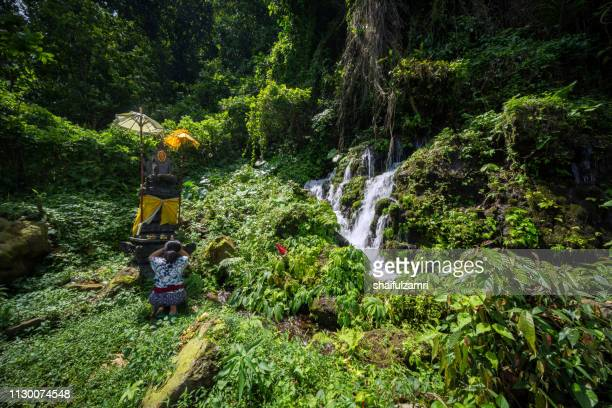Balinese woman pray at small temple at beautiful and small waterfall hidden in the tropical jungle of Bali, Indonesia.