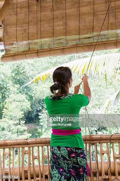 Balinese woman pulling up blinds