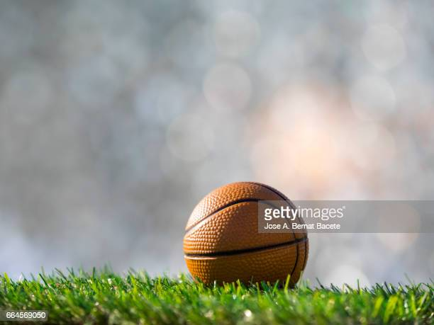 Ball of  basketball ball  on a surface of  grass of a soccer field