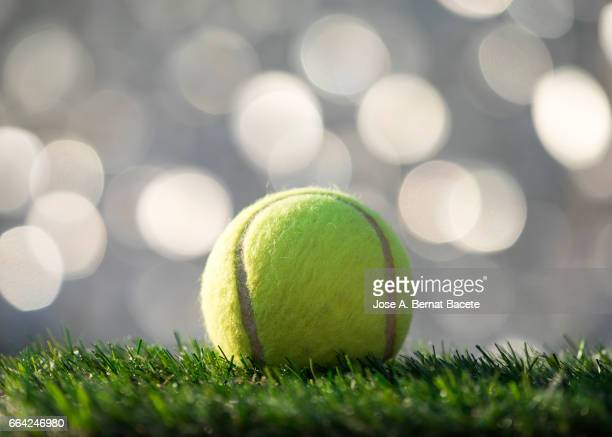 Ball of  tennis ball  on a surface of  grass of a soccer field