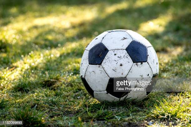 ball on grass - soccer stock pictures, royalty-free photos & images