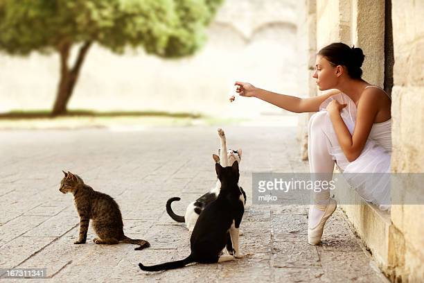 Ballerina with cats
