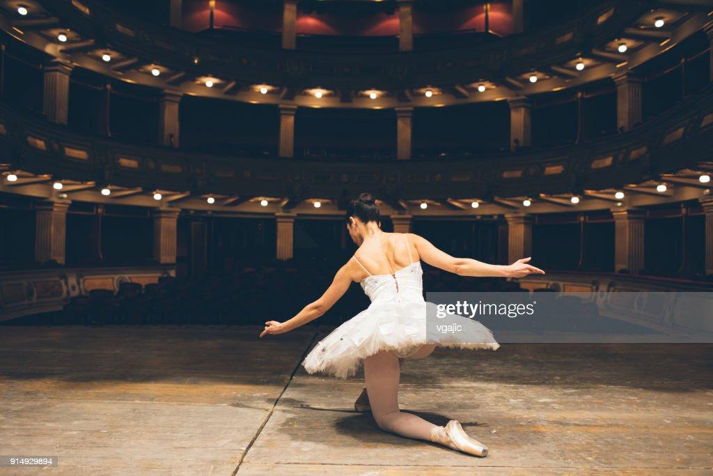 Disegno Di Una Ballerina Classica : Costumi danza classica tutù per adulti e bambina joydanza