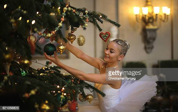 Ballet dancer Daisy Kerry aged 17 from The Claire Dobinson School of Dance poses for photographers as she recreates The Nutcracker in Chatsworth...