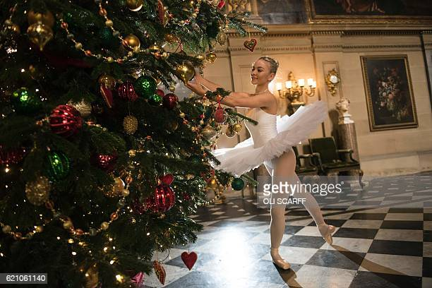 Ballet dancer Daisy Kerry poses by a Christmas tree in the Painted Hall of Chatsworth House which is decorated for their Christmas season in the...