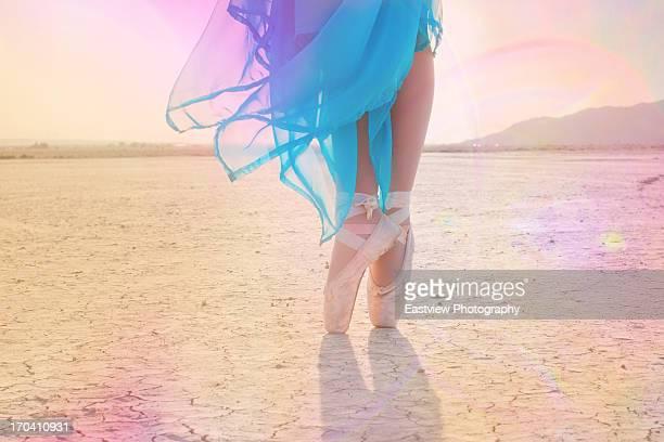 ballet shoes - lake bed fotografías e imágenes de stock