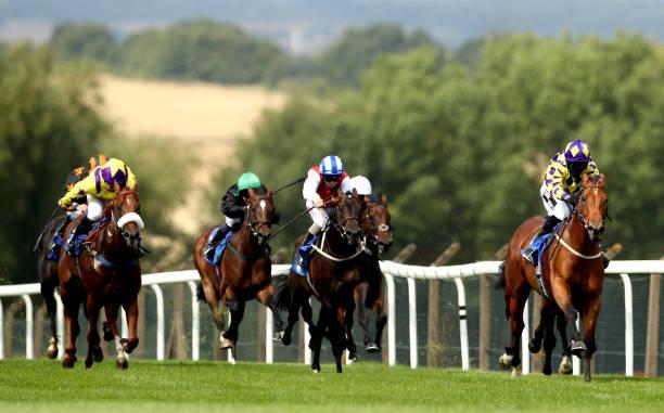 GBR: Pontefract Races