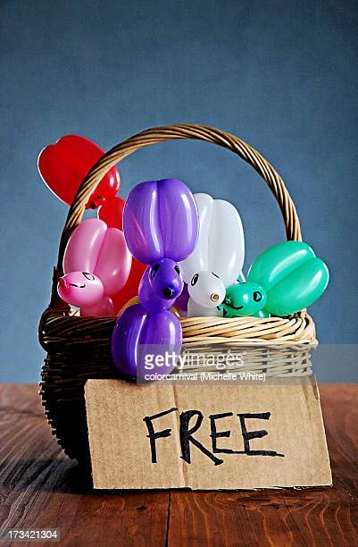 Balloon Animals - Free to a Good Home