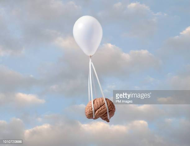 balloon carrying human brain - traumhaft stock-fotos und bilder