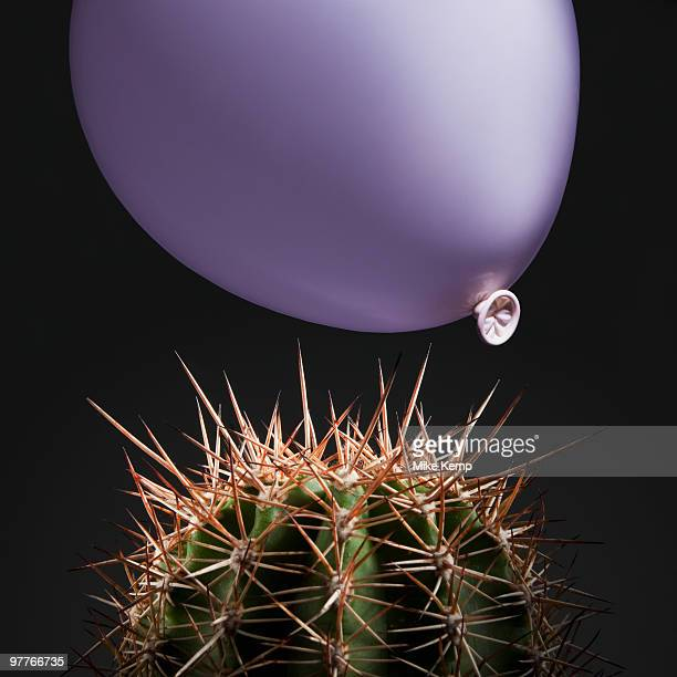 Balloon close to cactus thorns