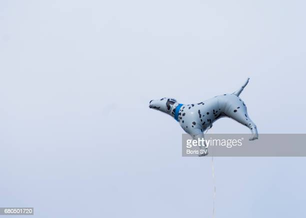 Balloon dog floating in sky