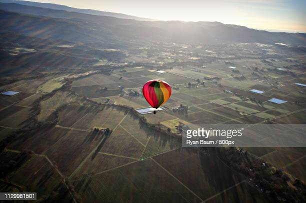 balloon over napa valley, ca at dawn - baum stock pictures, royalty-free photos & images