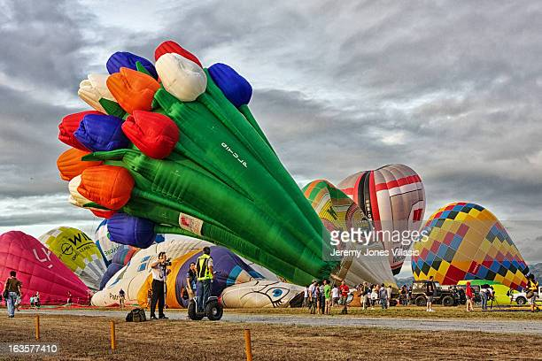 Balloon shaped like a bouquet of tulips stands out among 30 participating balloons from 15 countries during the Philippine International Hot Air...