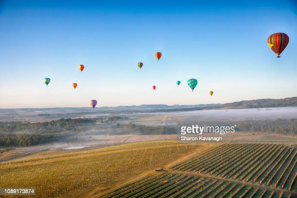 ballooning over the hunter valley - hot air balloon stock pictures, royalty-free photos & images