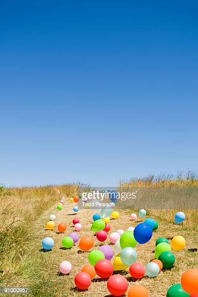 Balloons on Country Road