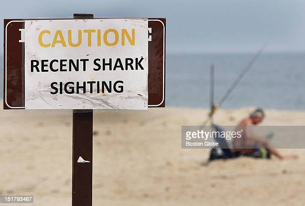 Ballston Beach in Truro was quiet after an alleged shark attack took place on Monday
