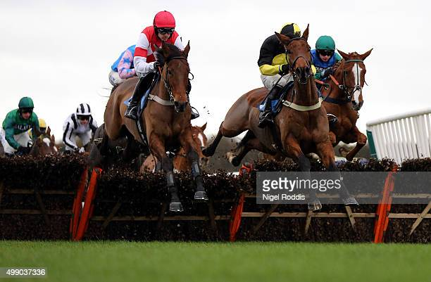 Ballydine ridden by Tom O'Brien on the way to winning The Weatherbys Bank The French Furze Novices Hurdle race at Newcastle racecourse on November 28...