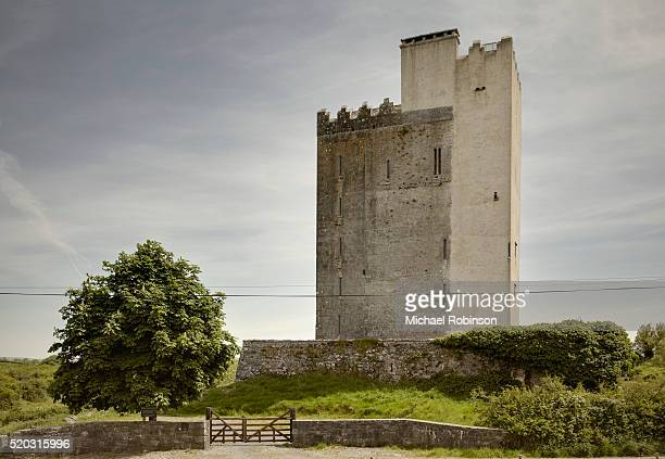 ballyportry castle, co clare ireland - michael robinson stock pictures, royalty-free photos & images