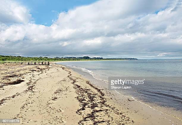 Balnarring beach