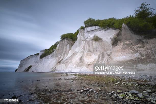 baltic sea and chalk cliffs, steep coast, moens klint, island moen, klint, denmark - selandia fotografías e imágenes de stock