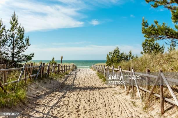 baltic sea beach entrance - polônia - fotografias e filmes do acervo
