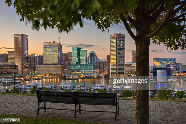baltimore akyline from historic federal hill park - baltimore maryland - fotografias e filmes do acervo