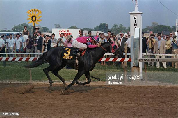 Alex Solis riding aboard Snow Chief heads to the finish line to win the 111th running of the Preakness Stakes by four lengths at Pimlico Race Track