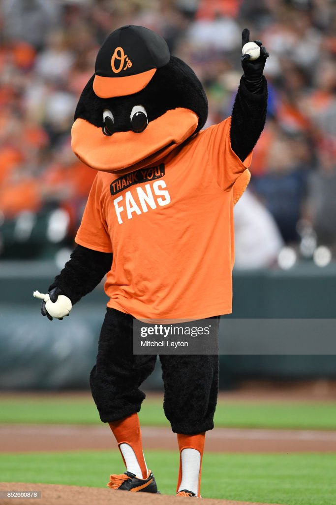 Baltimore Orioles mascot on the field before a baseball game against the Tampa Bay Rays at Oriole Park at Camden Yards on September 23, 2017 in Baltimore, Maryland.